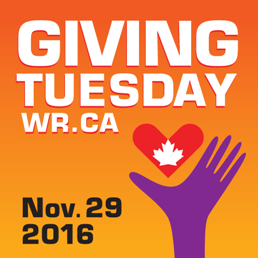 Giving Tuesday on November 29th - SUPPORT CARIZON!